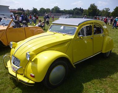 2-chevaux-jaune